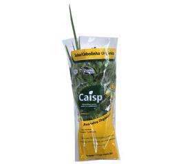 Salsa e Cebolinha orgânica Caisp 90g