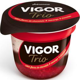 Sobremesa Láctea Vigor Trio Flocos de chocolate, Morango e Chocolate 100g