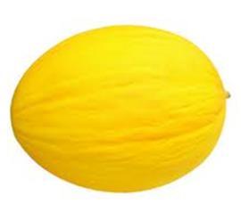 Melão amarelo unidade