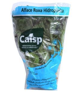 Alface Caisp Hidropônica Crespa Roxa Unidade