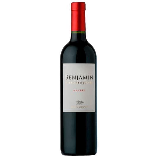 Vinho Argentino Benjamin Malbec Tinto 750ml - Imagem em destaque
