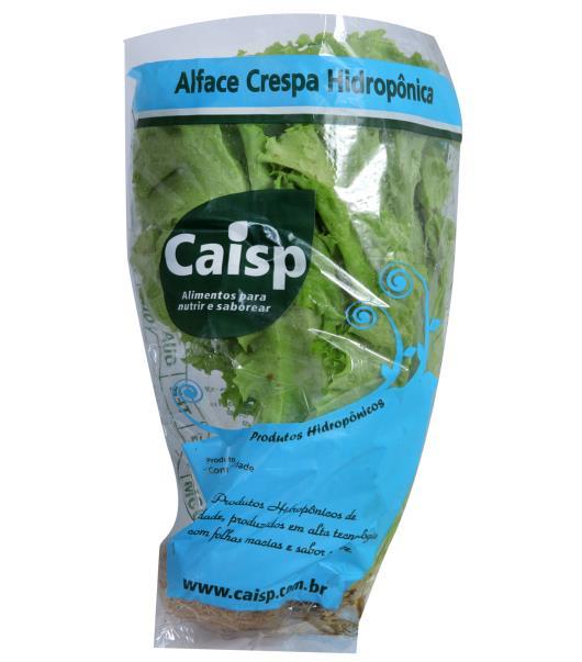 Alface Caisp Hidropônica Crespa Unidade - Imagem em destaque